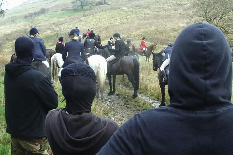 fox hunt sab